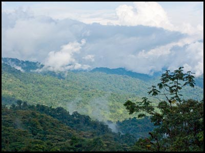 View looking toward Sumaco.
