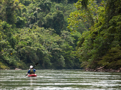 Kayaker_Jungle_scenery_Rio_Hollin_Ecuador