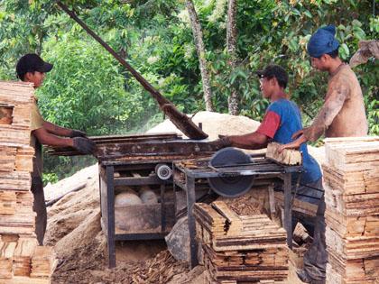 Sawmill_Misahualli_Ecuador_crates