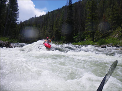 Kayaker_Boof_Rams_Horn_Middle_Fork_Salmon_Idaho