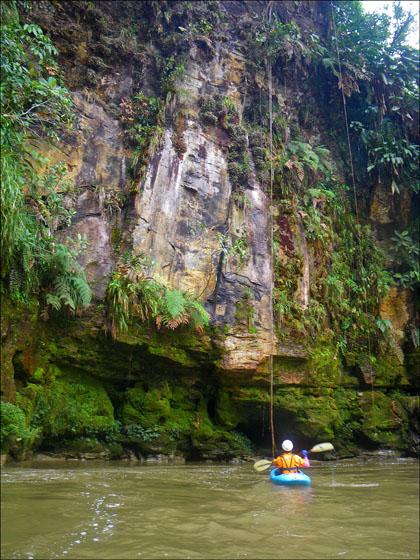 Kayaker and Jungle wall, Rio Jondachi, Ecuador.