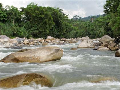 Rio Misahualli rapid, Ecuador