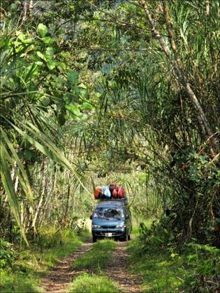 Van_kayaks_road_Jungle_Ecuador_Quijos