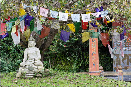 Buddha_prayer flags