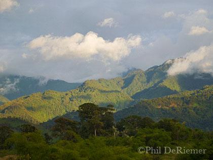 Ecuador_Quijos_Mountains