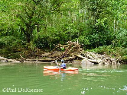 Kayaker_Hollin_Ecuador