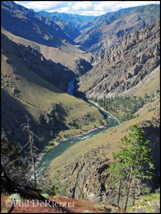 Middle Fork Salmon_Idaho