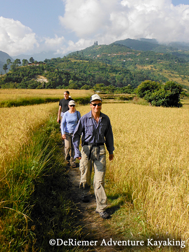 Pre-paddling hike through rice fields on our way to the Temple the Queen Mother had built for her son the 5th King. Punakha Valley.