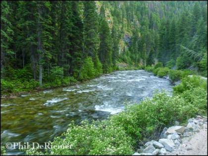 Selway_Idaho