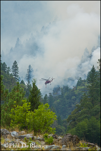 helicopter_tanker_fire_rogue