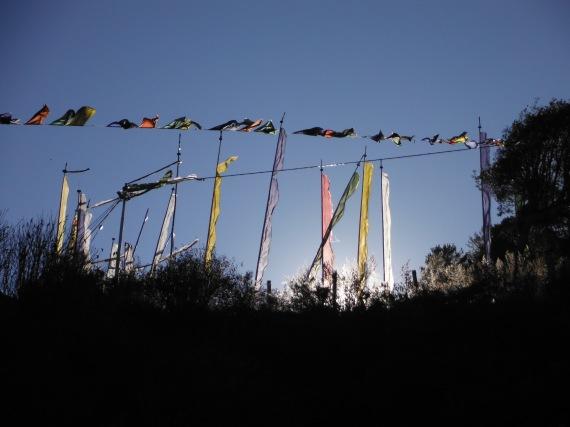 Prayer_Flags_Bhutan