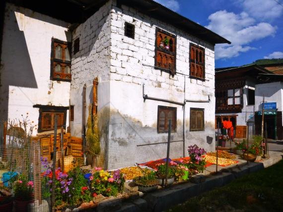 Flowers_traditional home_Bhutan